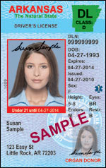 Class D Driver's License Under 21