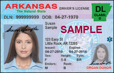Class D Driver's License Over 21